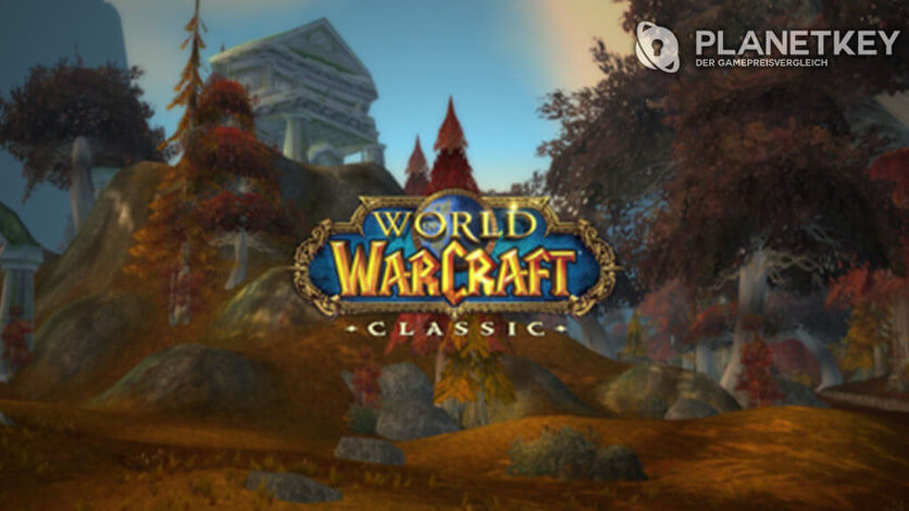 DDOS-Attacke auf WoW Classic Server
